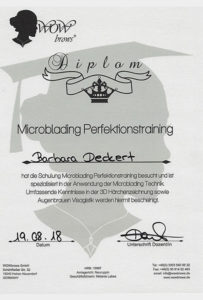 Microblading Perfektionstraining